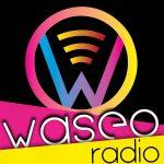 waseo-radio-Beauvais-Oise-HautsdeFrance-Affipub Communication
